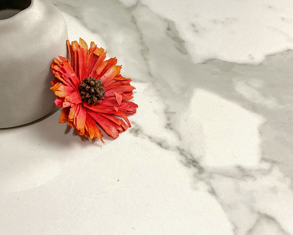 Copertina Marmi Pregiati Statuario con fiore arancione per accedere alla pagina della serie
